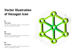 Vector Illustration Of Hexagon Icon Ppt PowerPoint Presentation File Graphics Example PDF