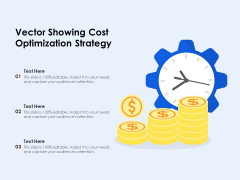 Vector Showing Cost Optimization Strategy Ppt PowerPoint Presentation Gallery Visual Aids PDF