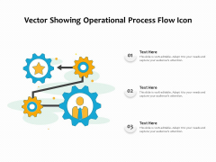 Vector Showing Operational Process Flow Icon Ppt PowerPoint Presentation Icon Elements PDF