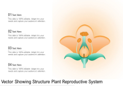 Vector Showing Structure Plant Reproductive System Ppt PowerPoint Presentation Icon Files PDF