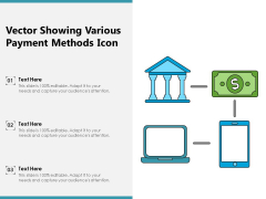 Vector Showing Various Payment Methods Icon Ppt PowerPoint Presentation Pictures Deck PDF