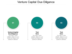 Venture Capital Due Diligence Ppt PowerPoint Presentation Infographic Template Background Image Cpb
