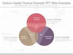 Venture Capital Finance Example Ppt Slide Examples