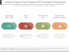 Venture Capital Route Diagram Ppt Examples Professional