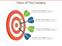 Vision Of The Company Template 1 Ppt PowerPoint Presentation Infographics Files
