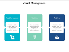 Visual Management Ppt PowerPoint Presentation Infographic Template Structure Cpb