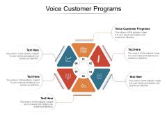 Voice Customer Programs Ppt PowerPoint Presentation Show Microsoft Cpb Pdf