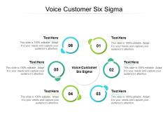 Voice Customer Six Sigma Ppt PowerPoint Presentation Portfolio Background Images Cpb