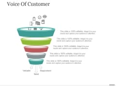 Voice Of Customer Tamplate 2 Ppt PowerPoint Presentation Layouts