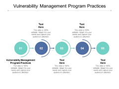 Vulnerability Management Program Practices Ppt PowerPoint Presentation Inspiration Cpb