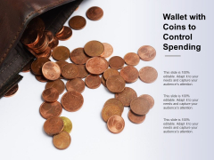 Wallet With Coins To Control Spending Ppt Powerpoint Presentation Styles Backgrounds
