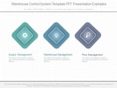 Warehouse Control System Template Ppt Presentation Examples