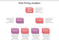 Web Pricing Analytics Ppt PowerPoint Presentation Infographic Template Topics Cpb Pdf