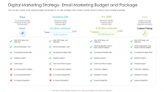 Well Being Gymnasium Sector Digital Marketing Strategy Email Marketing Budget And Package Inspiration PDF