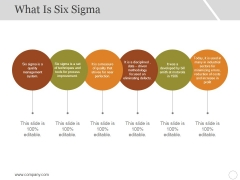 What Is Six Sigma Ppt PowerPoint Presentation Styles Model