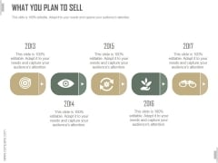What You Plan To Sell Ppt PowerPoint Presentation Deck