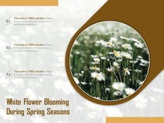 White Flower Blooming During Spring Seasons Ppt PowerPoint Presentation Summary Graphics Tutorials PDF