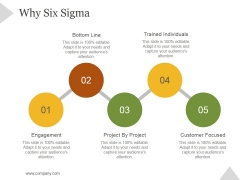 Why Six Sigma Ppt PowerPoint Presentation Infographics