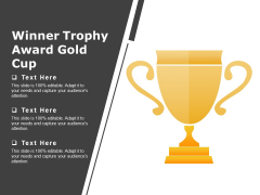 Winner Trophy Award Gold Cup Ppt PowerPoint Presentation Summary Templates