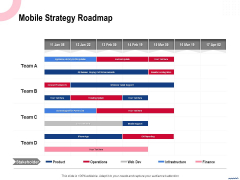 Wireless Phone Information Management Plan Mobile Strategy Roadmap Sample PDF