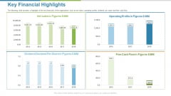 Work Execution Liability Key Financial Highlights Ppt Ideas Template PDF