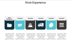 Work Experience Ppt PowerPoint Presentation Gallery Guide Cpb