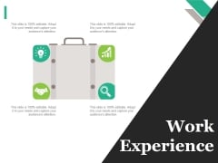 Work Experience Tamplate 1 Ppt PowerPoint Presentation Pictures Sample