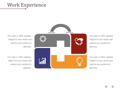 Work Experience Template 1 Ppt PowerPoint Presentation Styles