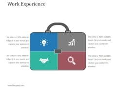 Work Experience Template 1 Ppt PowerPoint Presentation Tips