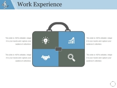 Work Experience Template 2 Ppt PowerPoint Presentation Guidelines