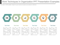 Work Techniques In Organization Ppt Presentation Examples