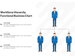 Workforce Hierarchy Functional Business Chart Ppt PowerPoint Presentation Gallery Icons PDF