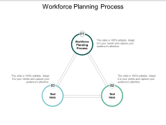 Workforce Planning Process Ppt Powerpoint Presentation Professional Graphics Template Cpb