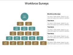 Workforce Surveys Ppt PowerPoint Presentation Styles Design Inspiration Cpb