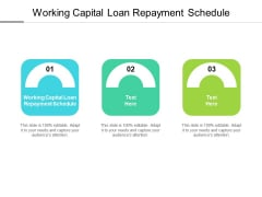 Working Capital Loan Repayment Schedule Ppt PowerPoint Presentation Icon Structure Cpb