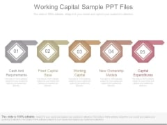 Working Capital Sample Ppt Files