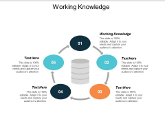 Working Knowledge Ppt PowerPoint Presentation Show Picture Cpb