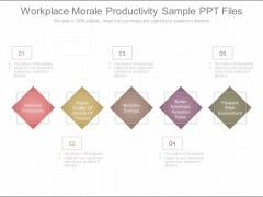 Workplace Morale Productivity Sample Ppt Files