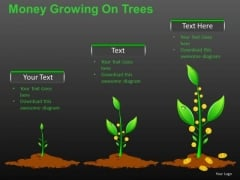 Wealthy Money Growing On Trees PowerPoint Slides And Ppt Diagram Templates