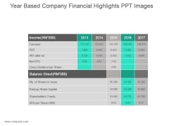 Year Based Company Financial Highlights Ppt Images