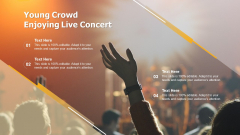 Young Crowd Enjoying Live Concert Ppt Pictures Visual Aids PDF