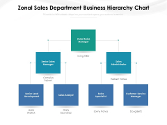 Zonal Sales Department Business Hierarchy Chart Ppt PowerPoint Presentation File Gridlines PDF