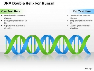business_powerpoint_template_dna_double_helix_for_human_ppt_templates_1