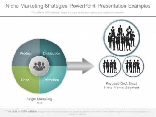 niche marketing strategies powerpoint presentation examples, Powerpoint templates
