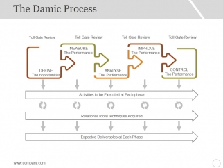 The_Damic_Process_Template_2_Ppt_PowerPoint_Presentation_Summary_Example_Slide_1