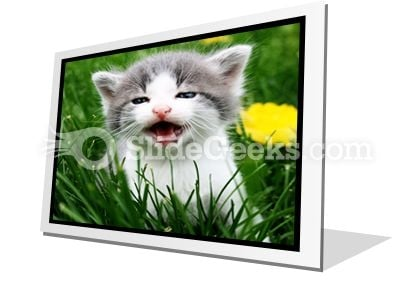 Baby Cat PowerPoint Icon F