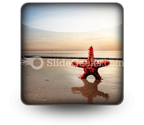 Beach Starfish PowerPoint Icon S