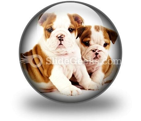 Bulldogs Animals PowerPoint Icon C