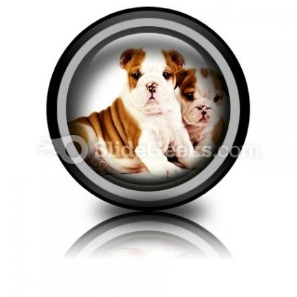 Bulldogs Animals PowerPoint Icon Cc