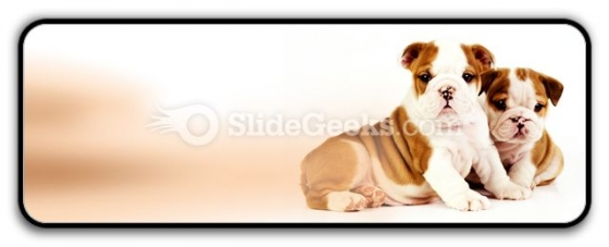 Bulldogs Animals PowerPoint Icon R